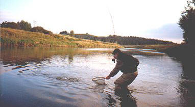 Fly fishing on the Mataura River
